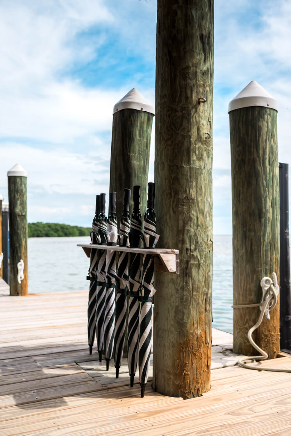 Freas Wedding Photography Key West 7 - Florida Keys Wedding Photographer - Little Palm Island Wedding