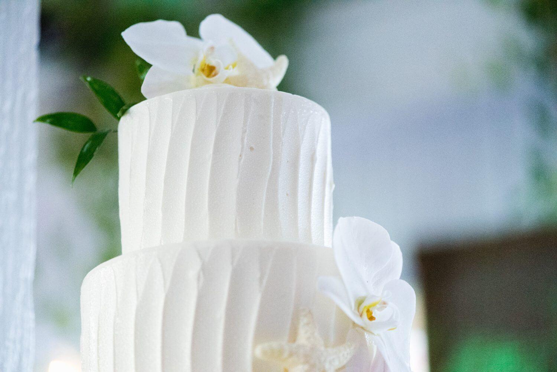 freas photography key west wedding 71 - Key West Wedding   Jackie & Paul   Freas Photography